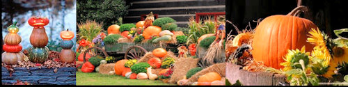 Everything pumpkin....